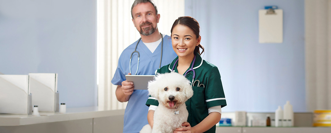 Veterinary Care Practitioner
