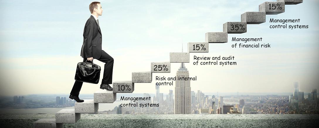 CIMA Professional - Strategic Level (P3) Performance Strategy