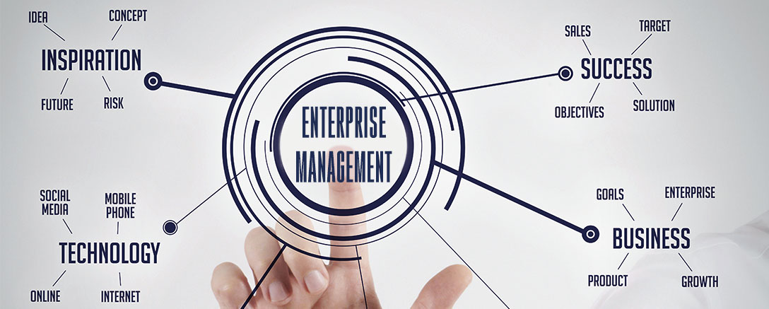 CIMA Professional - Management Level (E2) Enterprise Management