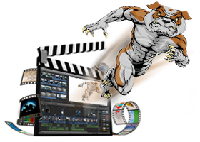 Animation & Movie