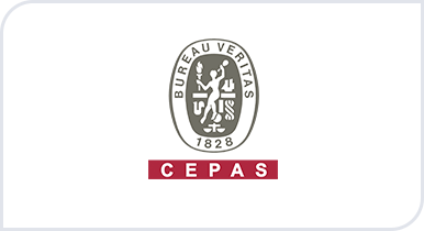 CEPAS - Lean Six Sigma Training and Certification