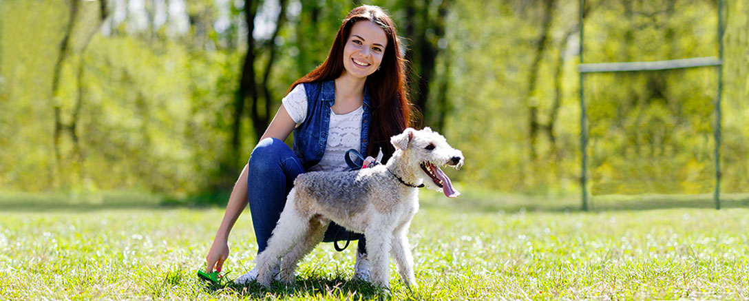 Pet Psychology Level 2 Diploma