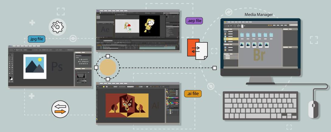 Mastering Adobe Bridge CC