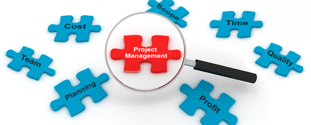 Project Management Institute (PMI) Course with PMP® & CAPM®