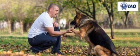 Canine Communication Course