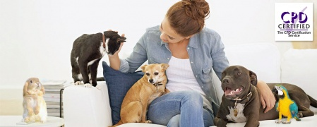 Level 2 International Pet Sitting / Dog Walking Diploma