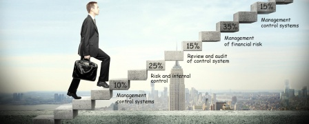 CIMA Professional - Strategic Level (P3) Performance Strategy