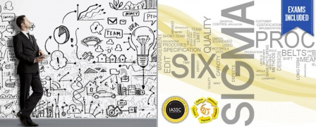 Project Member - Entry Level Certification (PRINCE2® Foundation & Lean Six Sigma Yellow Belt, Exams included)