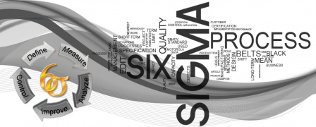Lean Six Sigma Black Belt ISO 18404 Training Course