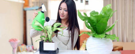 Interior Plant Care Diploma