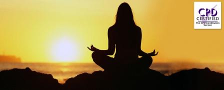 Mindfulness Diploma
