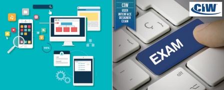 CIW User Interface Designer Training with Exam