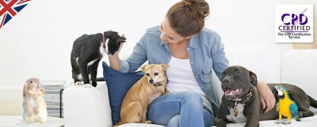 Level 2 Pet Sitting & Dog Walking Diploma