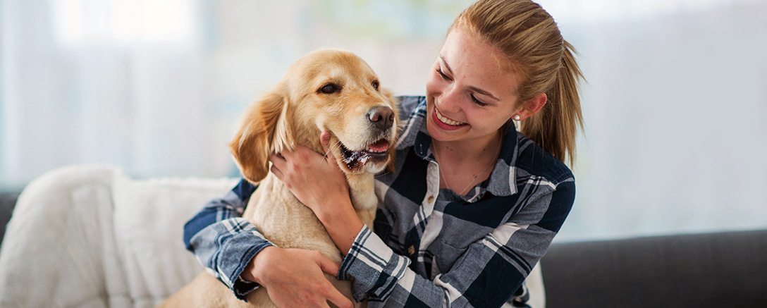 Animal Care Diploma